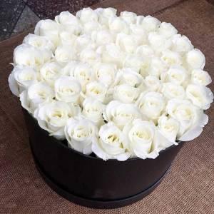 51 белая роза в черной коробке R505